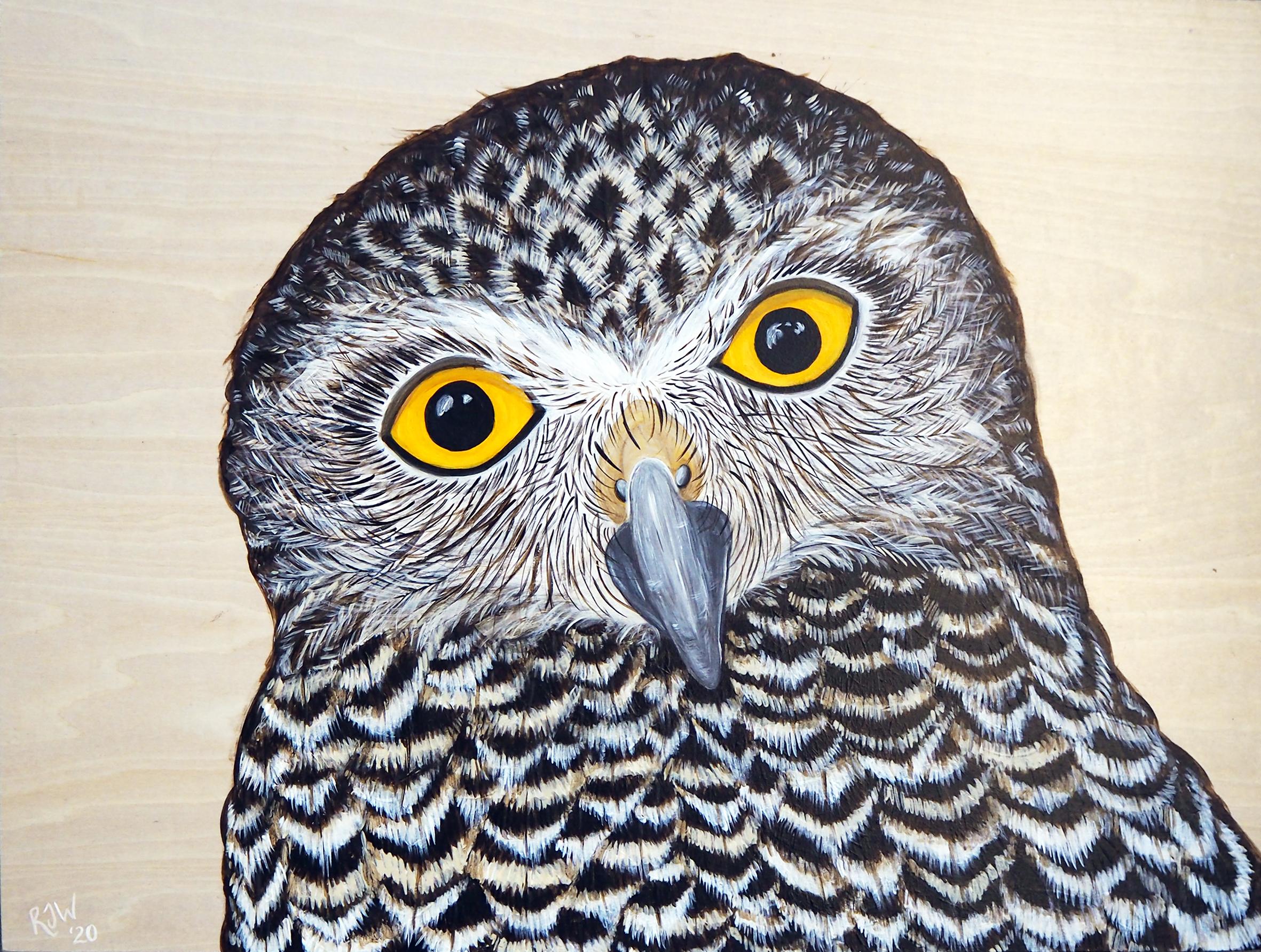 Power in Wisdom (Powerful owl)