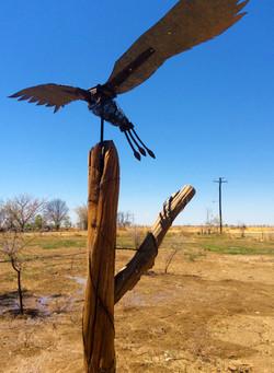 EcoArt Biodiversity Sculpture Trail