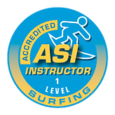 asi_accr_Instr_logo_surfing_1.png