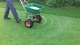 Surrey Lawn Services,  lawn care surrey, Surrey lawn care services, scarifying services in surrey, Surrey lawn care, lawn care services in surrey, lawn treatment services surrey, moss removal services surrey, lawn care farnham