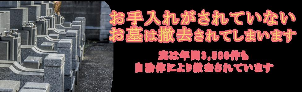 撤去_00000.png