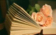 book-1769228_edited.jpg