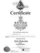 certificate1024_1.jpg