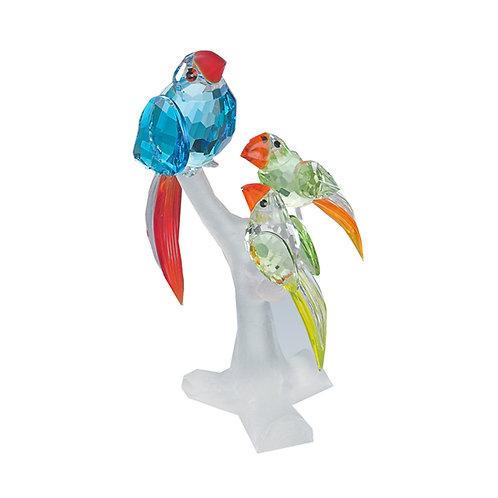 Gift. Parrot Family. 1051 80