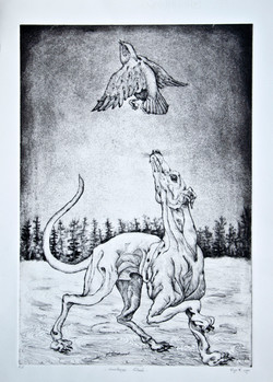 'Circostanza naturale'1984 acquatinta- ceramolle cm50x70