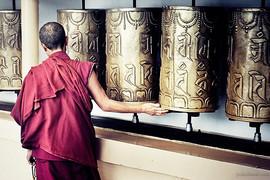 buddhist wheels.jpg