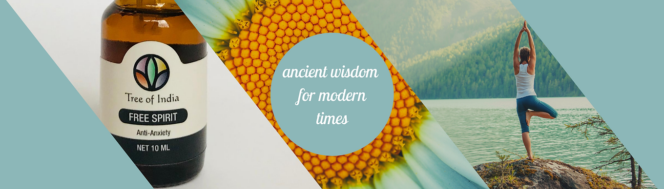 ancient wisdom banner.png