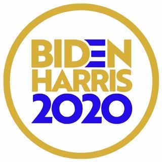 Biden/Harris 2020 Gold and Blue