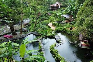 bambu-indah-640.jpg