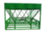 DSCN0394_clipped_rev_1_edited.png