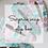 Thumbnail: Surprise Snap Clip Box.