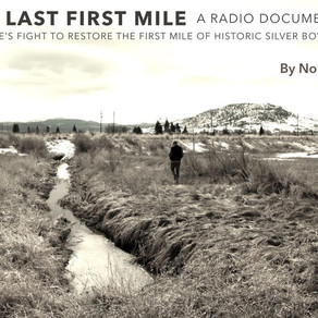 The Last First Mile