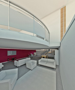 3D Images of new micro-flat scheme