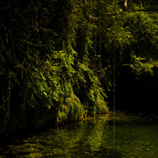 Water Color.jpg