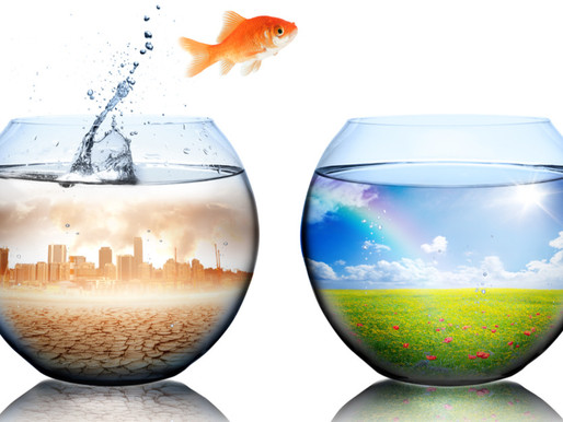 Towards SMART IMMUNITY - isolate the fish or clean the bowl?