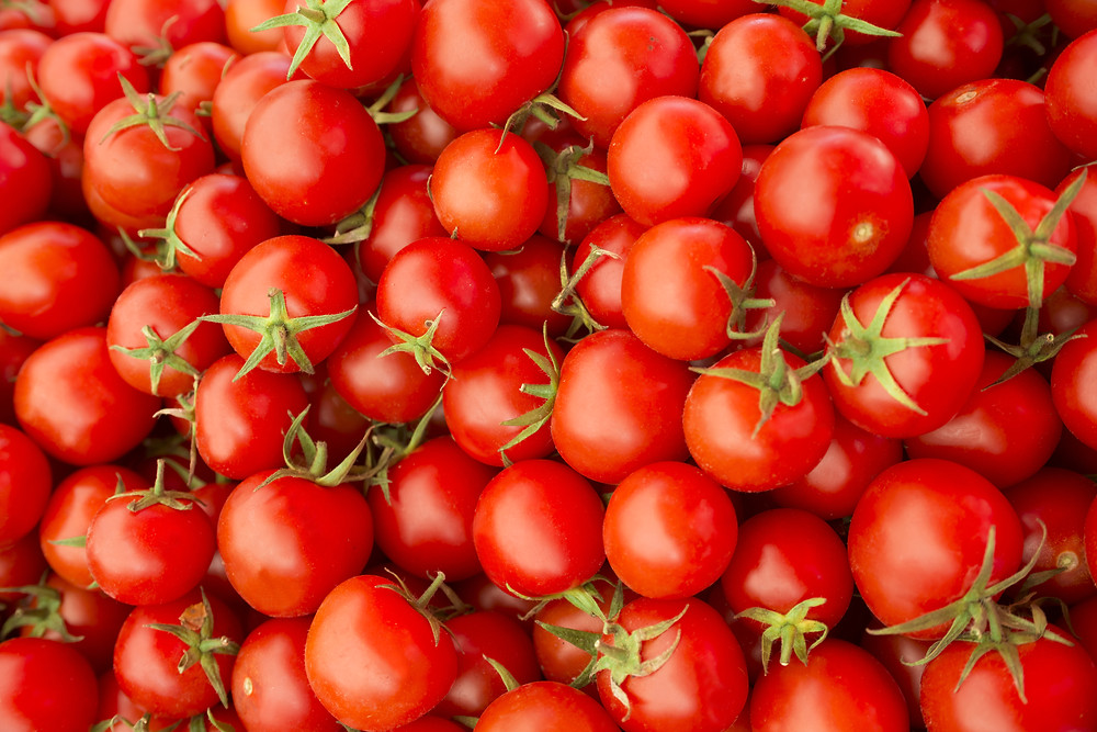 Red tomatoes. Credit Shutterstock  ID: 500371432