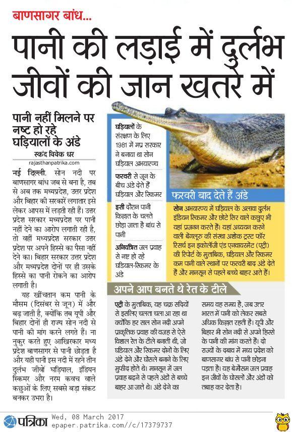 Water flow changes in Bansagar dam affects Gharial breeding patterns