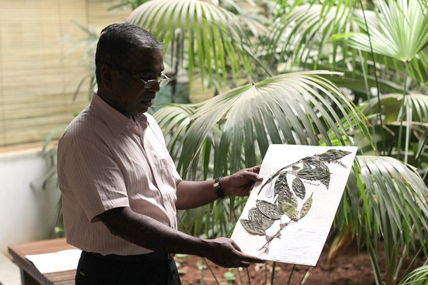 The man who listens to trees: Meet the botanist who helped Karnataka's Soligas secure their liveliho