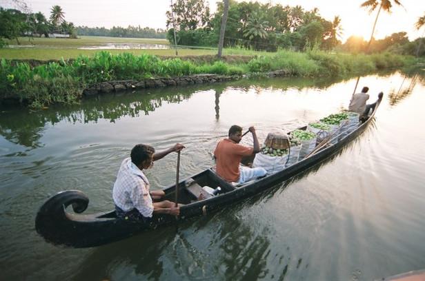 Kerala Throttling its Golden Goose