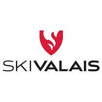 500x500px-logo-ski-valais_0001.jpg