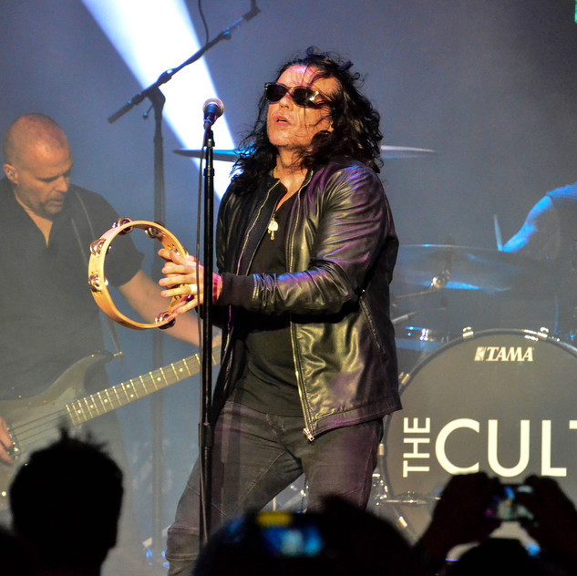 The Cult (3)