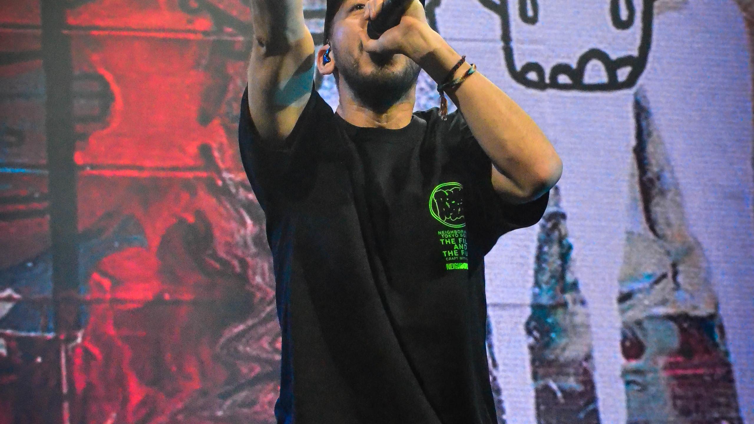 Mike Shinoda (10)