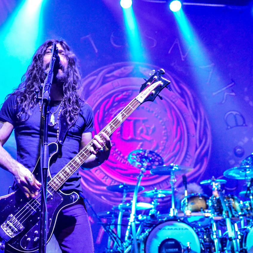 Whitesnake (96)