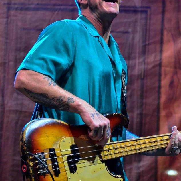 Weezer (49)