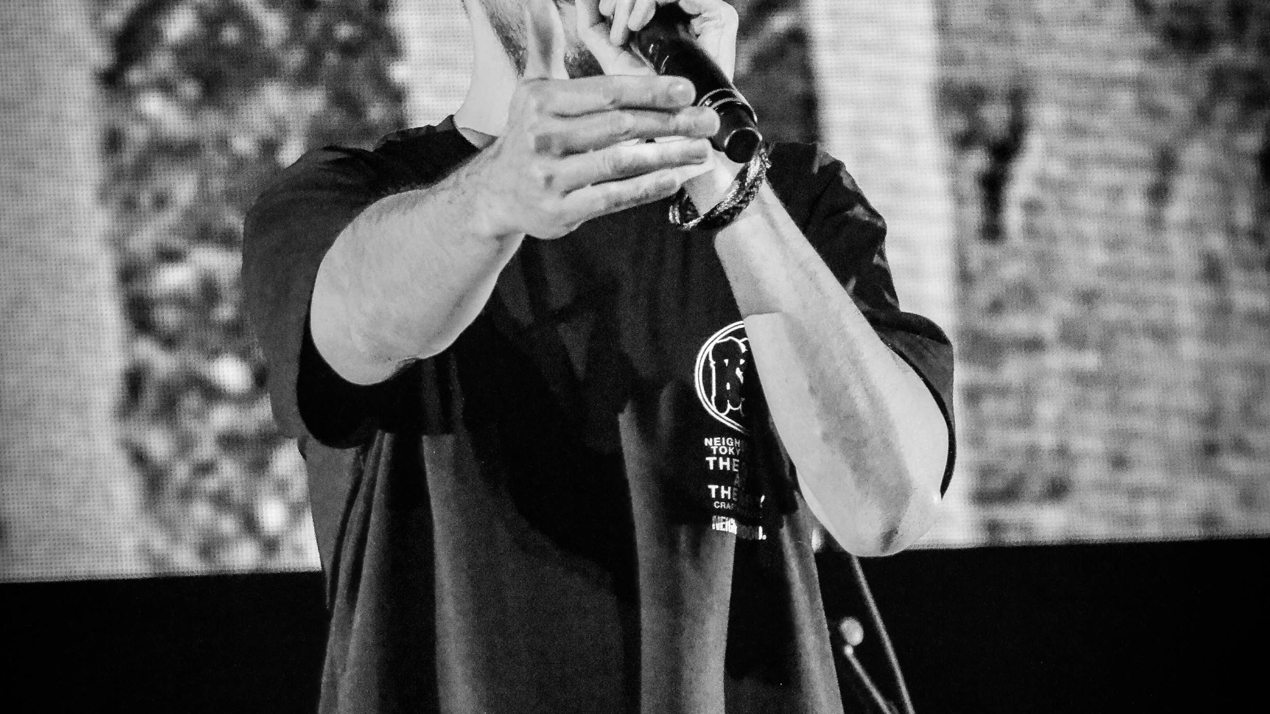 Mike Shinoda (22)
