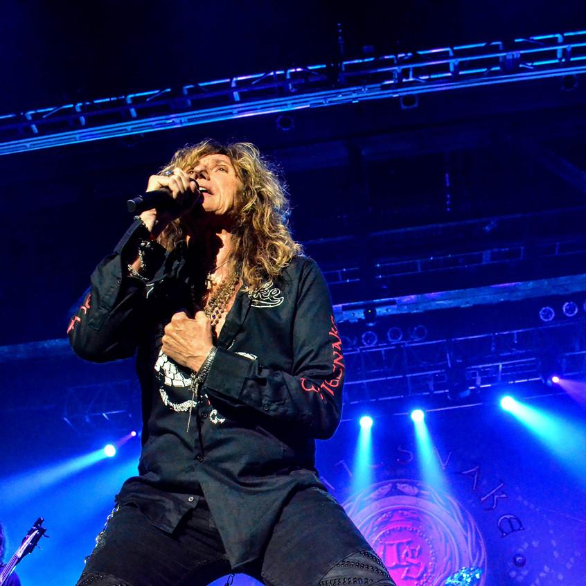 Whitesnake (82)