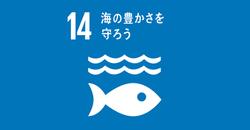 ⑭海の豊かさを守ろう