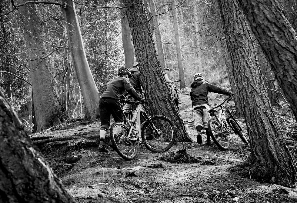 Rotae mountain biking