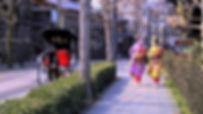 Русскоговорящий гид , переводчик и экскурсовод в Японии