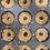 Thumbnail: Dog Doughnuts
