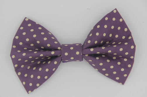 Purple Polkadot Bow Tie
