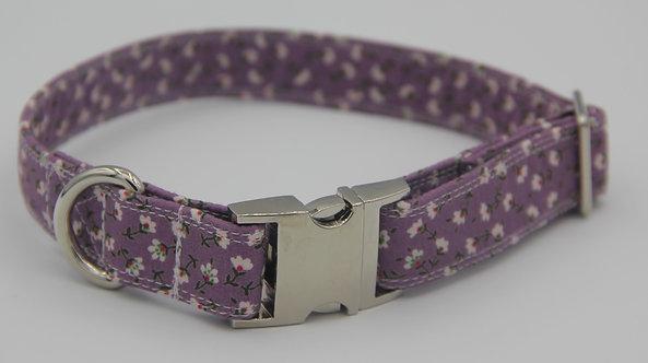 Purple Daisy dog collar