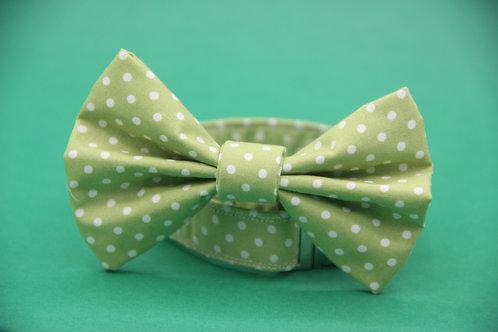 Pale Green Polkadot Bow Tie