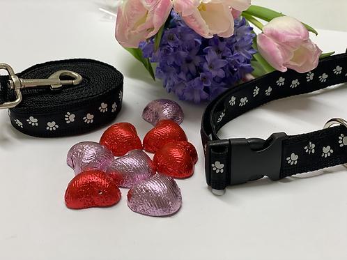 Handmade Dog Collar with matching dog Lead
