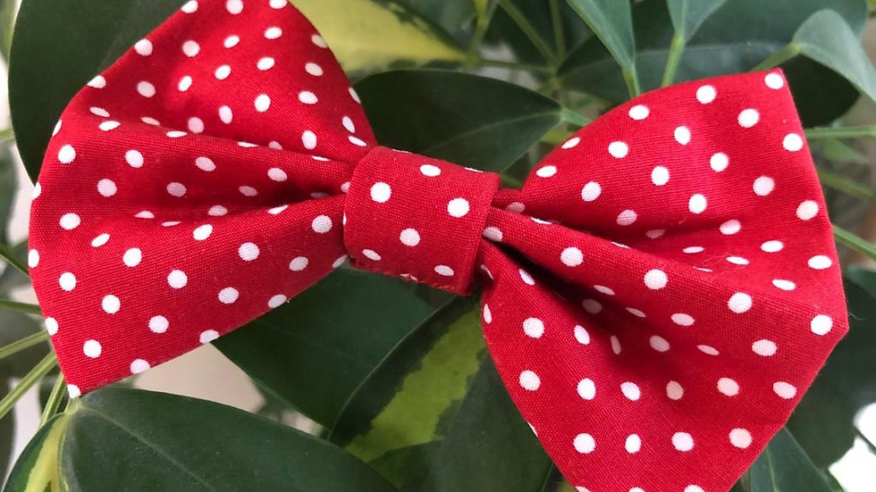 Beautiful Rose and Hubble Red Polkadot Bow Tie
