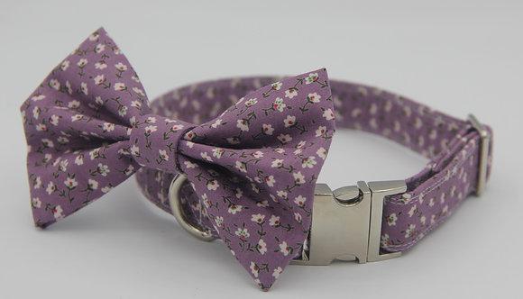 Purple Daisy dog bow tie