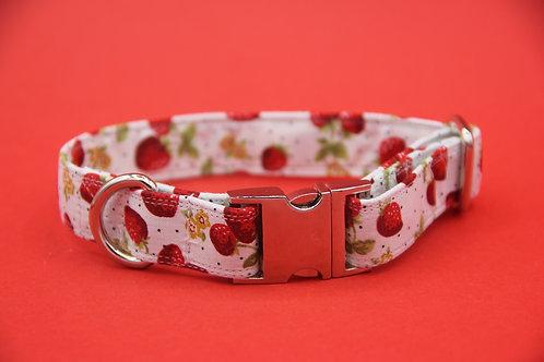 White Strawberry Fields Dog Collar