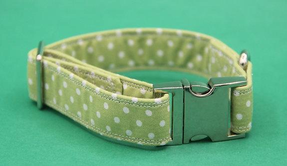 Pale Green Polkadot Collar