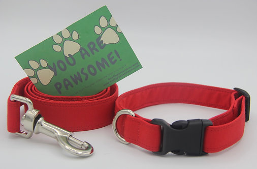Red Dog Collar and Lead Set