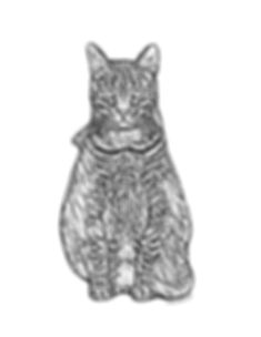 Monty Coloring Page.jpg