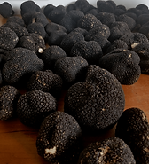 Black Autumn Truffle.png