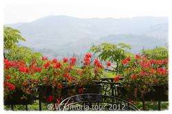 Terrace at La Bastiglia