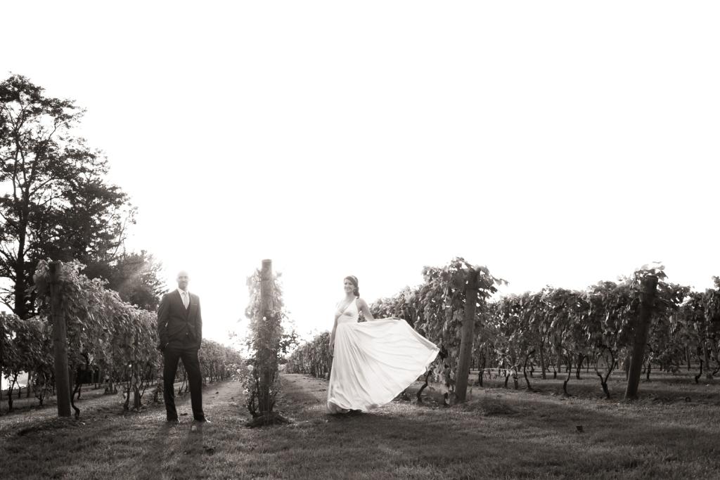 October in Vineyard