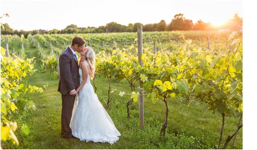 Early June in Vineyard