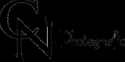 Logo Nies_transparent.png