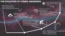 Critique: The Evolution of Cosmic Awareness